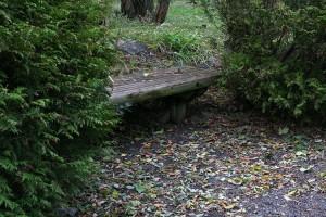 garden_006-300x200