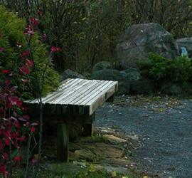 garden_030-270x250