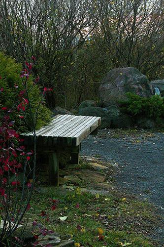 garden_030