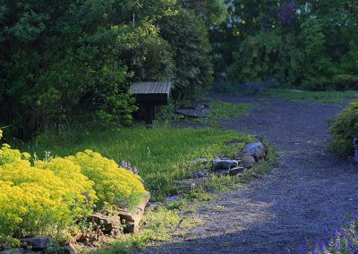 garden_065