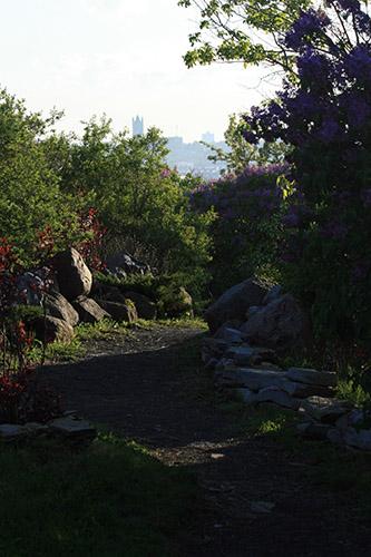 garden_071